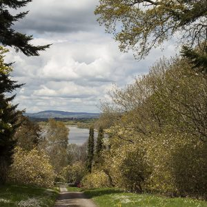 Photographs of irish landscapes mount Congreve