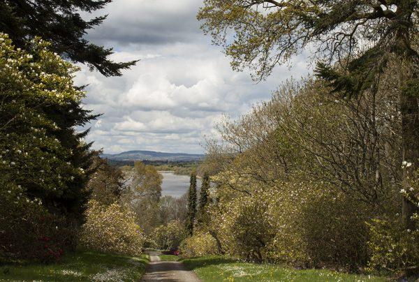 Photographs of irish landscapes mount Congreve
